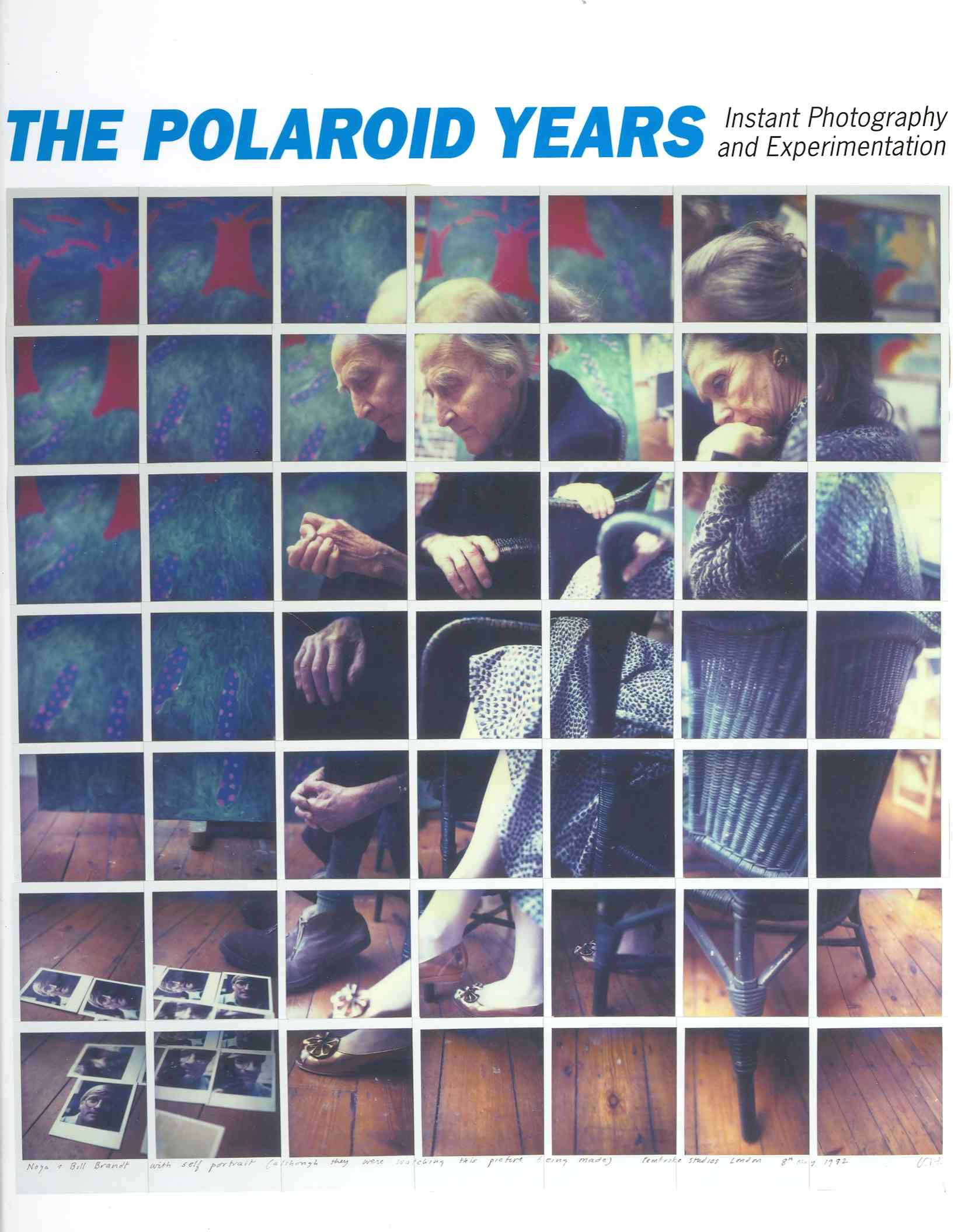 The Polaroid Years By Lombino, Mary-kay/ Buse, Peter (CON)